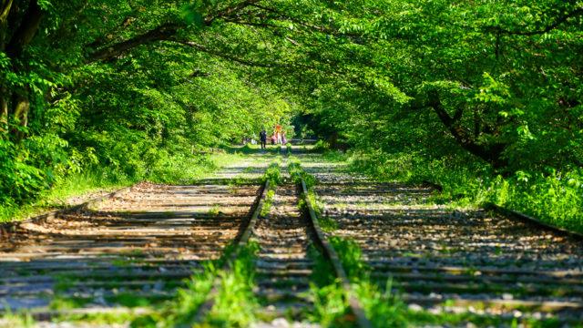 京都おすすめの新緑スポット 蹴上インクラインと南禅寺水路閣