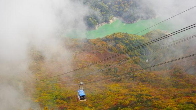 立山黒部アルペンルート旅行 大観峰のロープウェイと紅葉