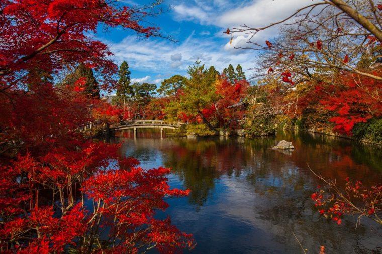 京都の紅葉雑誌