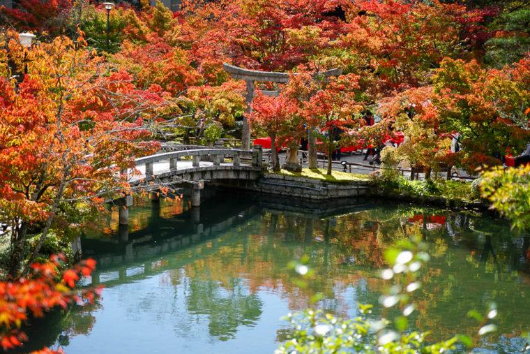 京都「永観堂(禅林寺)の紅葉」