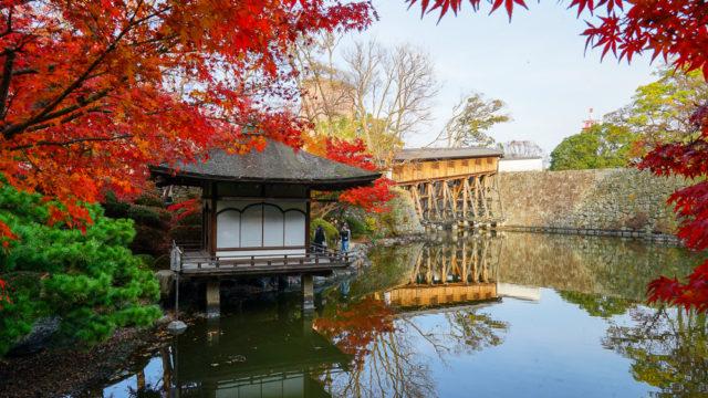和歌山城西之丸庭園(紅葉渓庭園)の紅葉