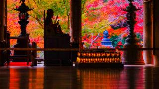 奈良「長谷寺の紅葉」