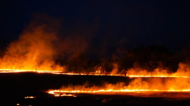 和歌山県串本町「本州最南端の火祭り(望楼の芝焼き)」