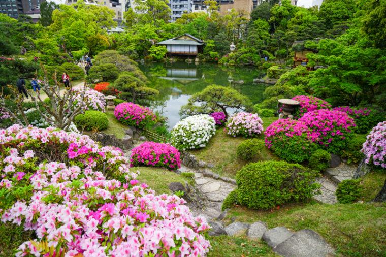 関西でおすすめのツツジの名所7選|相楽園