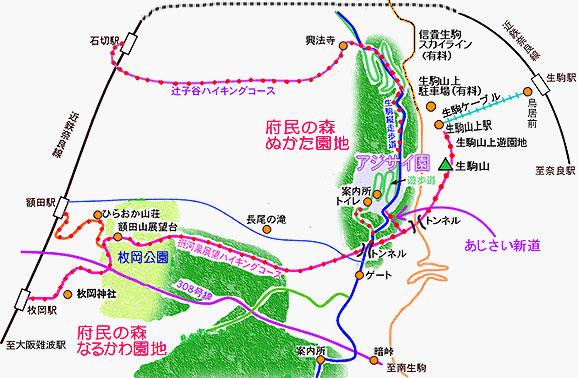 大阪の紫陽花(あじさい)園「府民の森 ぬかた園地」見頃・開花情報、アクセスを紹介