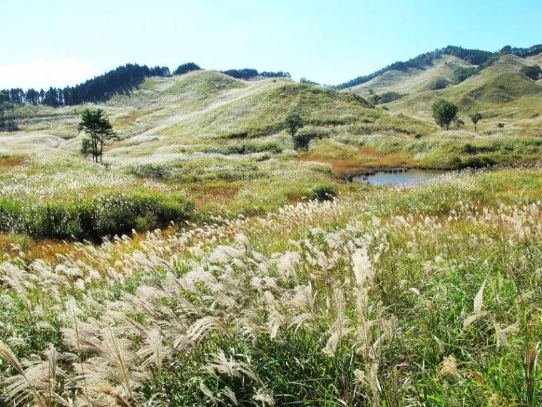 兵庫のおすすめ絶景スポット「砥峰高原」