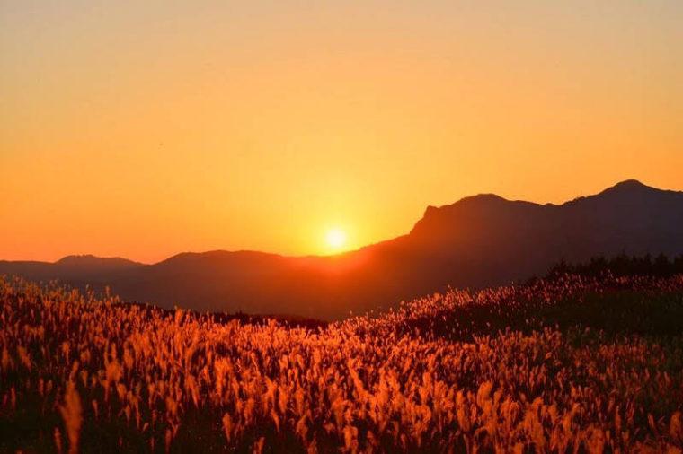 関西・奈良のおすすめススキ名所「曽爾高原」