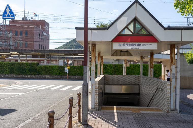 奈良・本薬師寺跡のホテイアオイ|畝傍御陵前駅