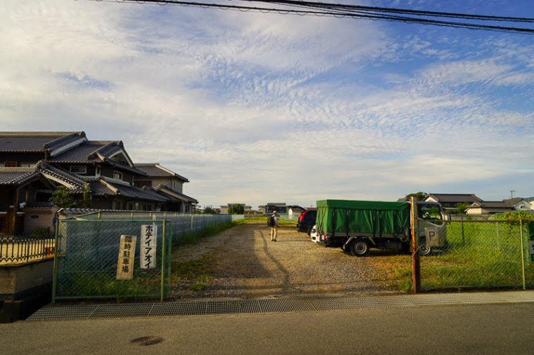 奈良・本薬師寺跡のホテイアオイ