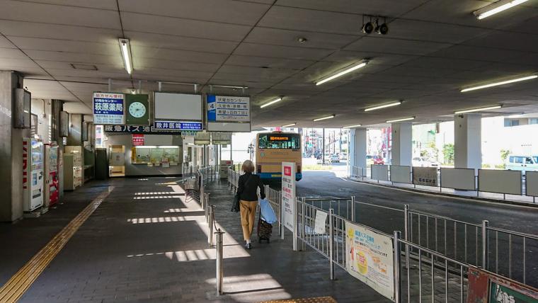とよのコスモスの里|阪急池田駅バスのりば