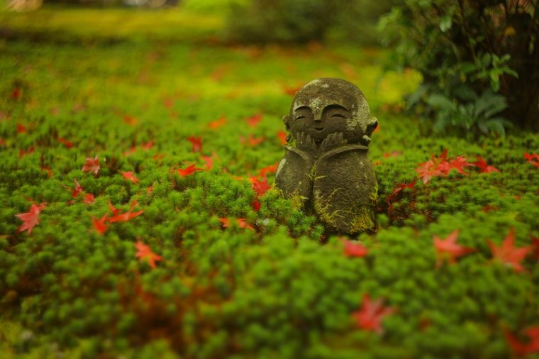 関西・京都のおすすめ紅葉スポット「三千院」