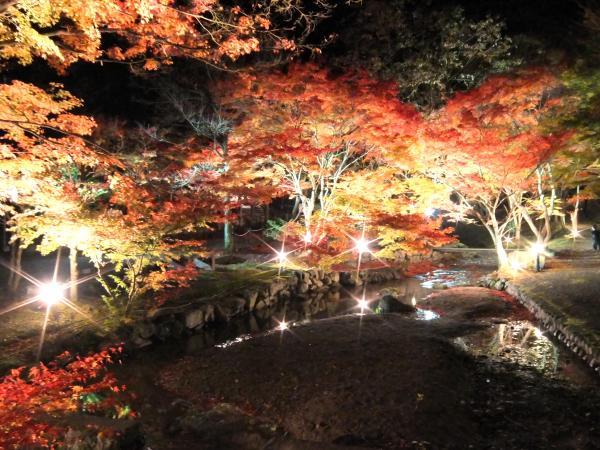 関西・兵庫のおすすめ紅葉スポット「東山公園」
