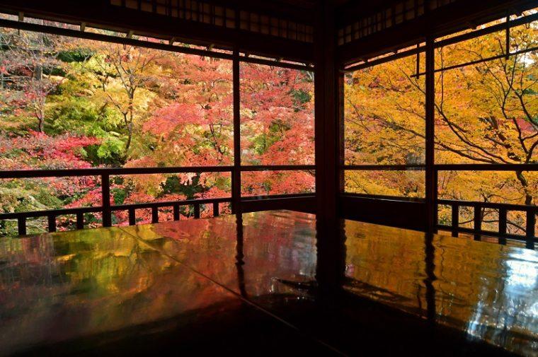 京都のおすすめ紅葉スポット「瑠璃光院」