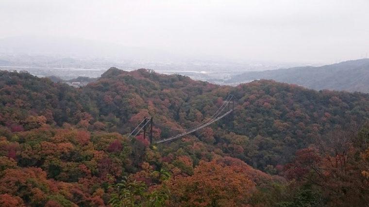 関西・大阪のおすすめ紅葉スポット「ほしだ園地(星のブランコ)」