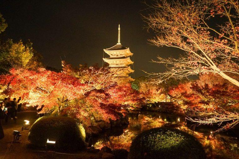 関西・京都のおすすめ紅葉スポット「東寺」