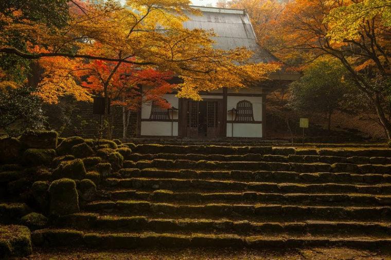 兵庫のおすすめ紅葉スポット「高源寺」