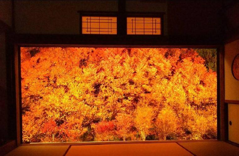 関西・兵庫のおすすめ紅葉スポット|但馬安國禅寺(安国寺)