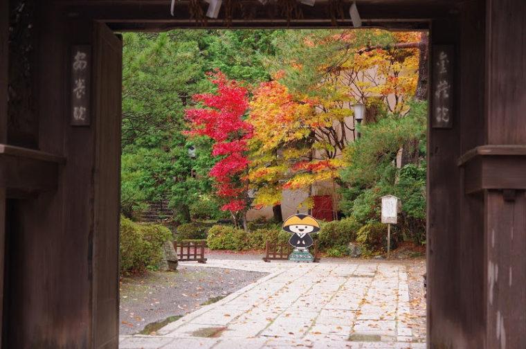 関西・和歌山のおすすめ紅葉スポット