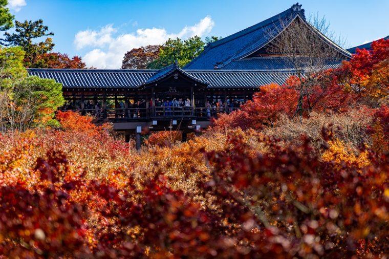 関西・京都のおすすめ紅葉スポット「東福寺」