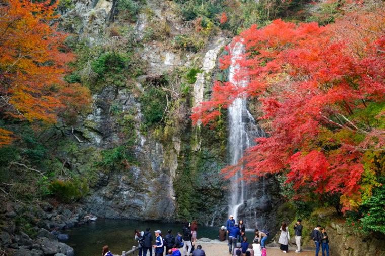 関西・大阪のおすすめ紅葉スポット「箕面の大滝」