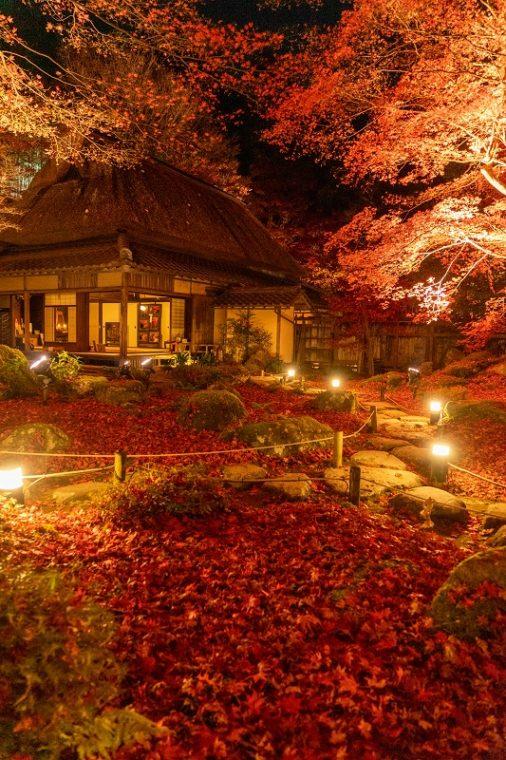 石の寺 教林坊の紅葉ライトアップ