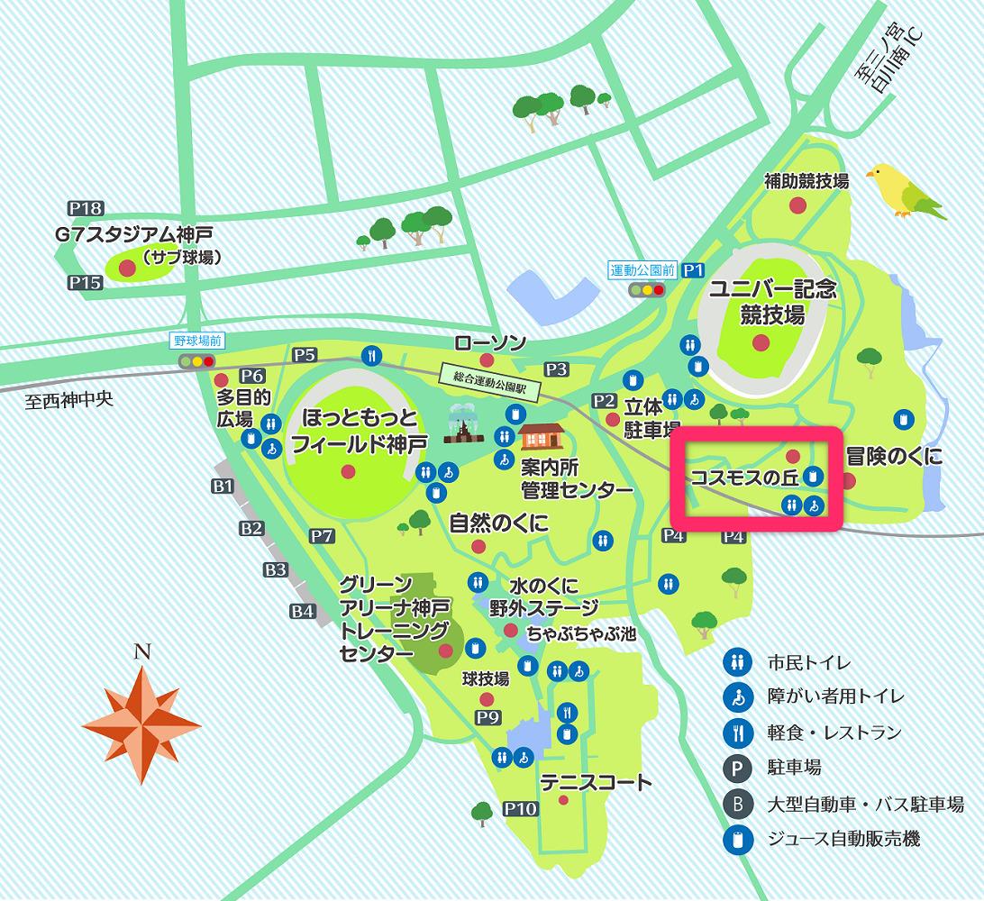 神戸総合運動公園の菜の花