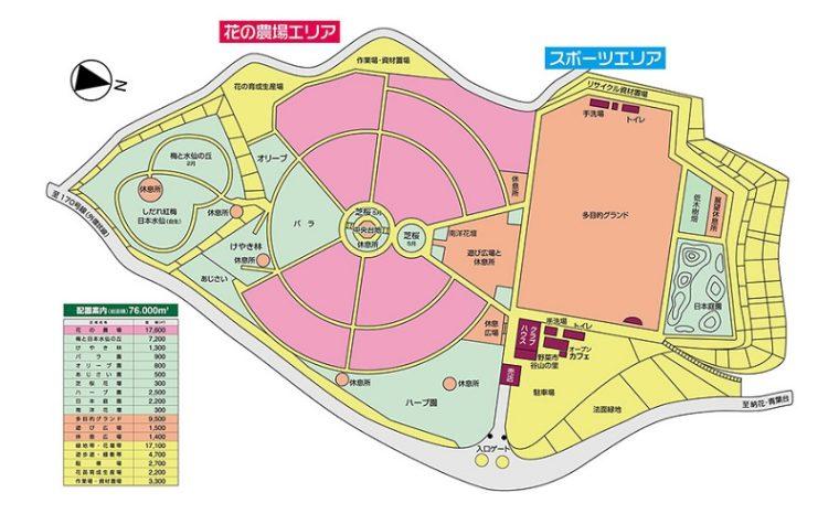 和泉リサイクル環境公園の菜の花畑