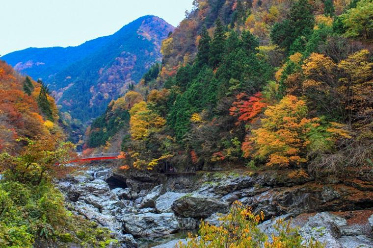 奈良のおすすめ絶景スポット「みたらい渓谷」