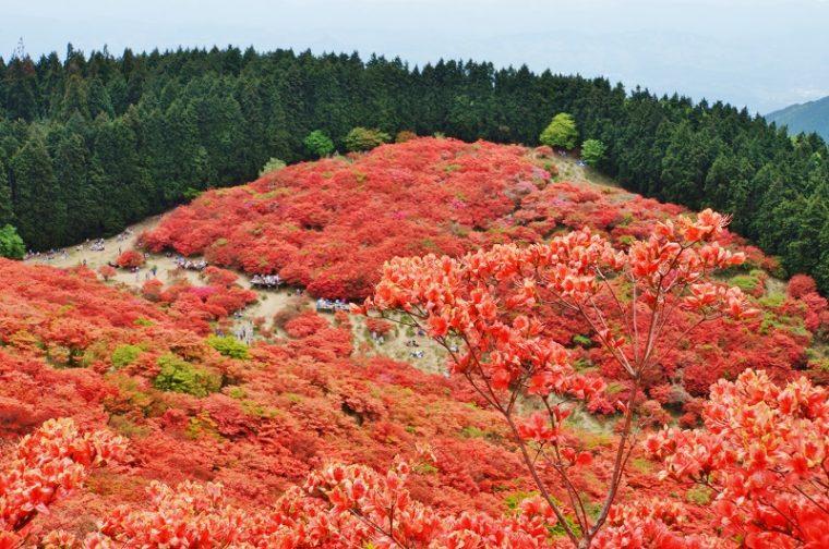 奈良のおすすめ絶景スポット「大和葛城山」