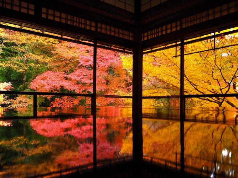 京都のおすすめ絶景スポット「瑠璃光院」