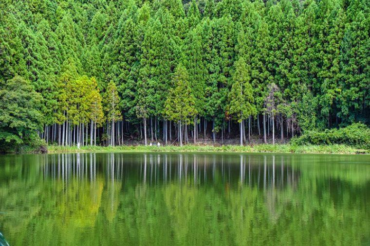 奈良のおすすめ絶景スポット「龍王ヶ渕」