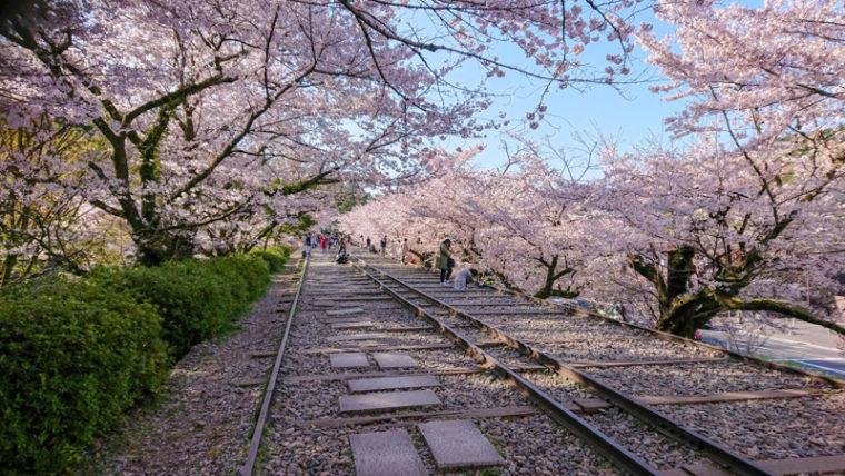京都のおすすめ絶景スポット「蹴上インクライン」