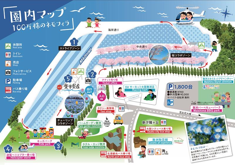 100万株のネモフィラ祭り「大阪まいしまシーサイドパーク」