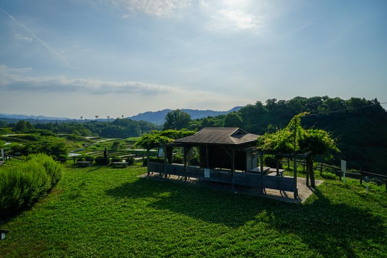 下赤阪の棚田|下赤坂城跡